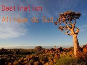 Destination Afrique du Sud