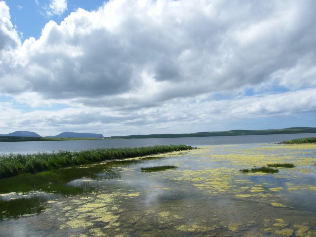Lochs of Stenness