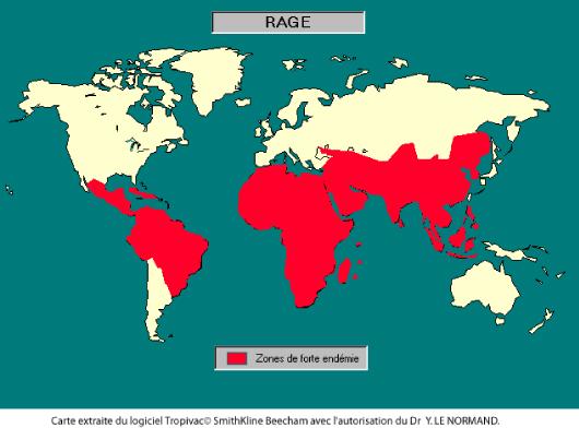 Les vaccins pour un tour du monde