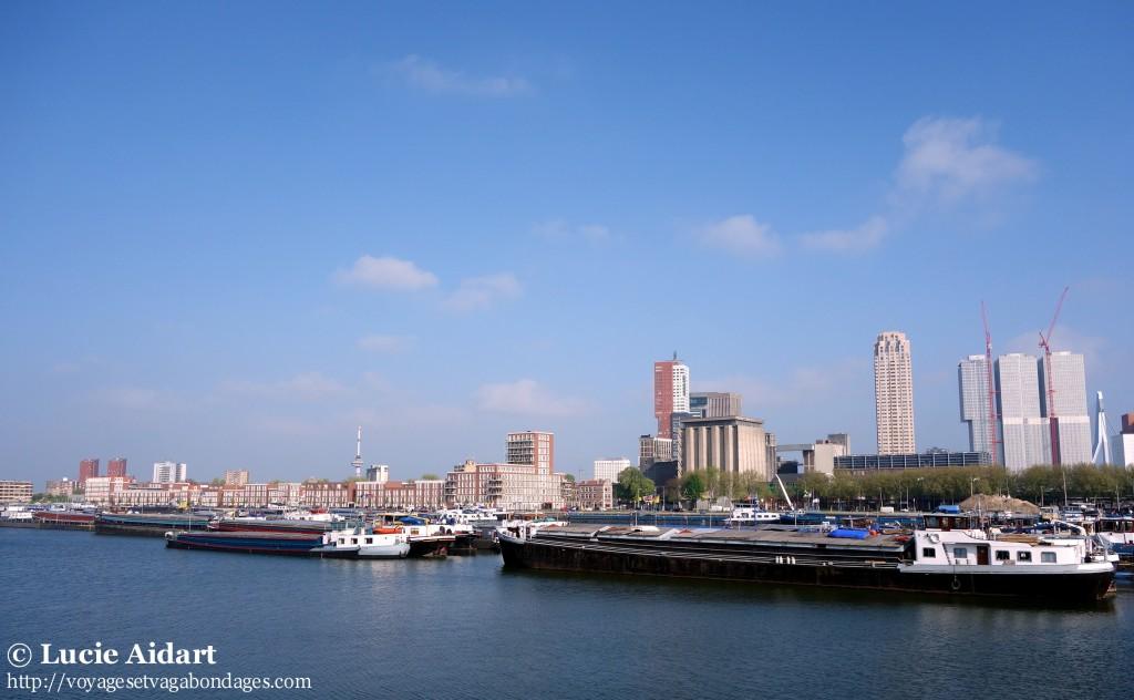 Ligne d'horizon, Rotterdam