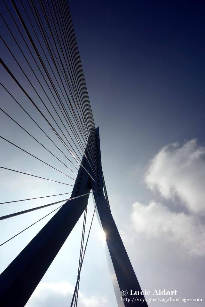 Pont Erasme