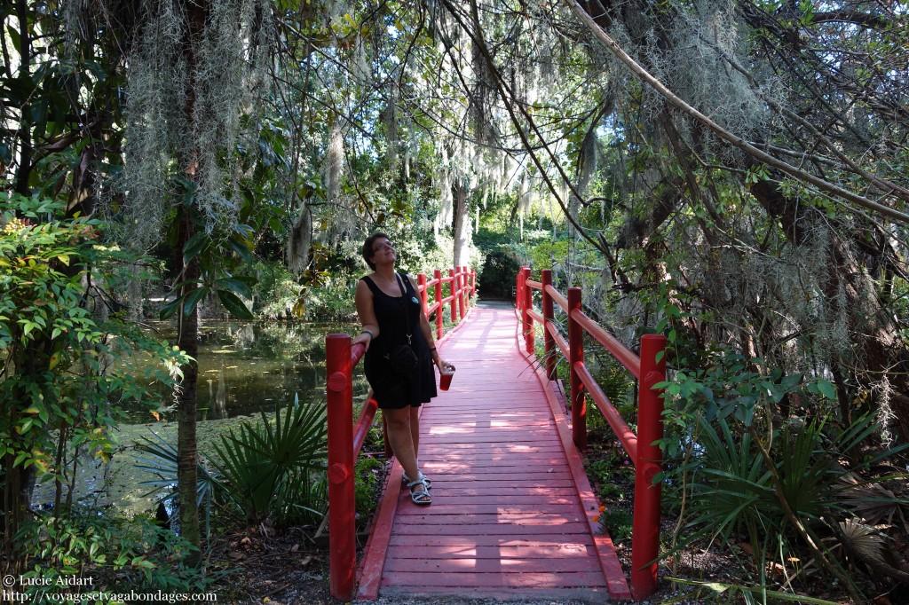 Dans les jardins de la plantation