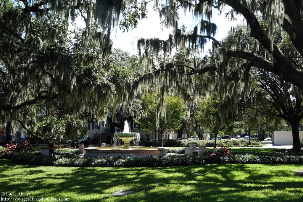 Romantique Savannah