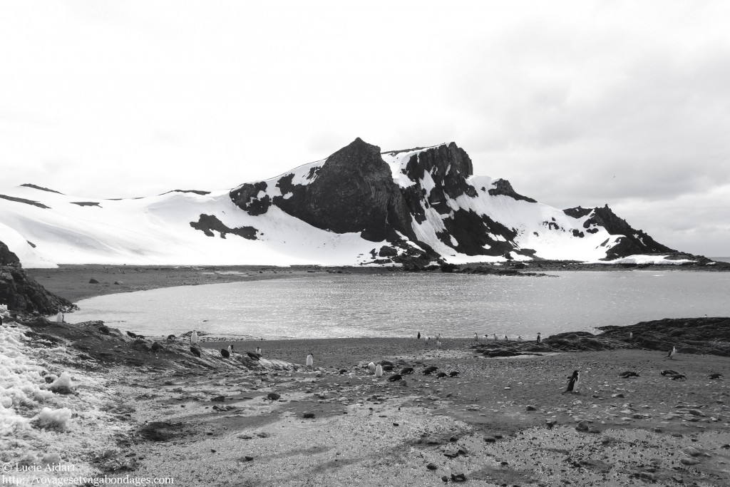 Paysages d'Antarctique en noir et blanc, lors d'une croisière en Antarctique