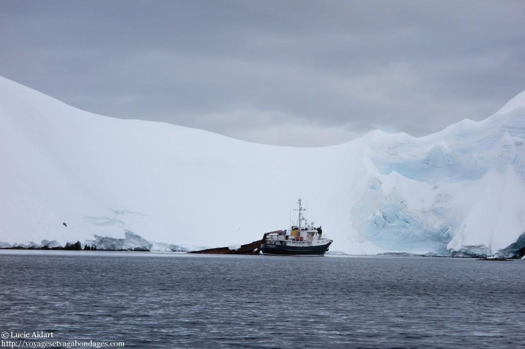L'épave d'un bateau baleinier à laquelle s'est ancré un petit bateau de touristes. Ils prenaient tranquillement le café quand nous nous sommes approchés d'eux - Croisière en Antarctique
