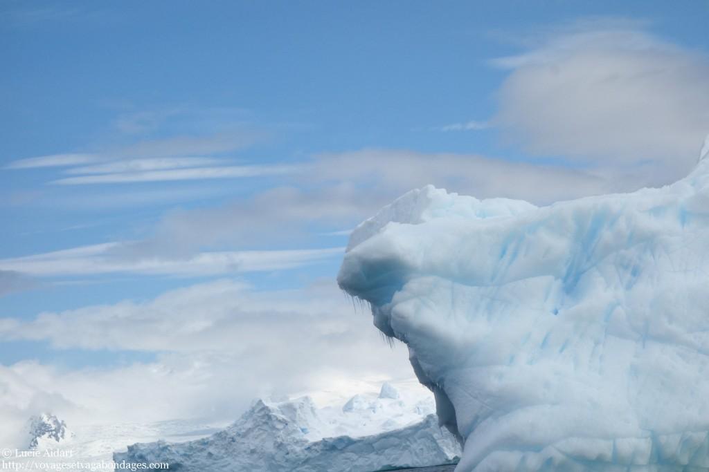 Le ballet des icebergs lors d'un voyage en Antarctique