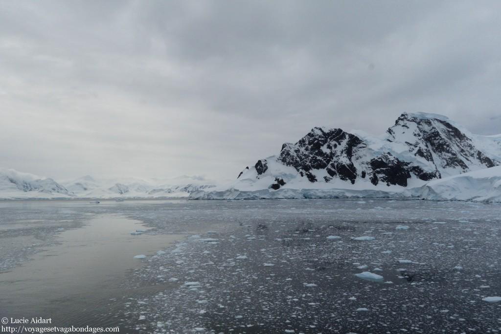 Pris dans la glace en zodiac en Antarctique