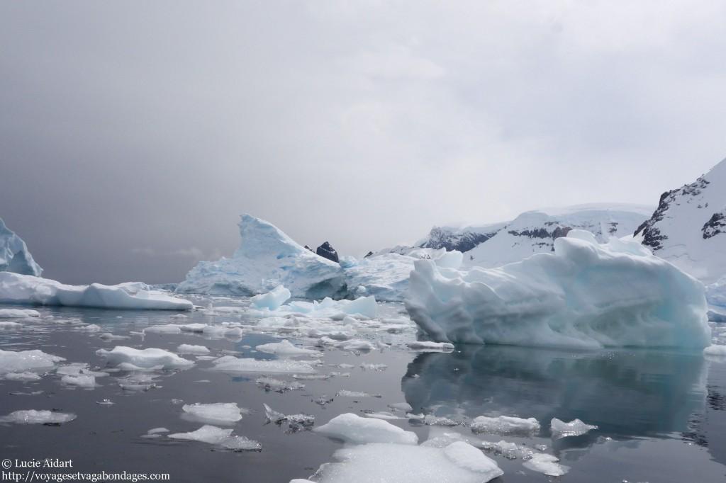 Ambiance fin du monde - Danco Island - Fêter Noël en Antarctique - Une ambiance de fin du monde