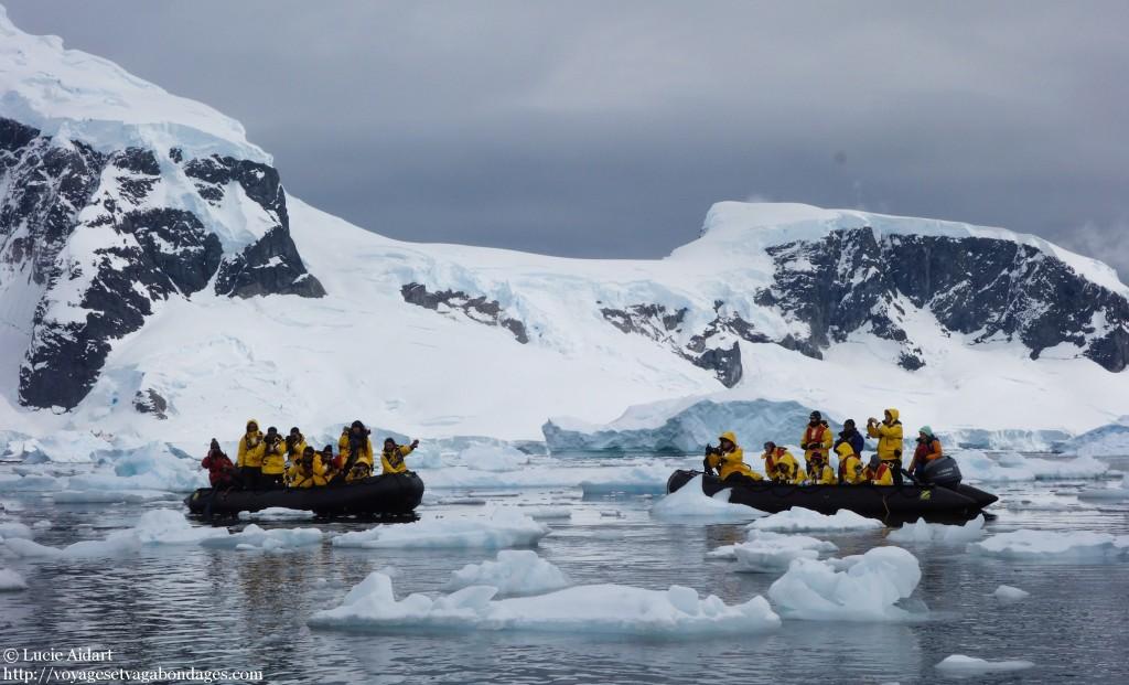 Croisière en zodiac à Danco Island - Danco Island - Fêter Noël en Antarctique - Une ambiance de fin du monde