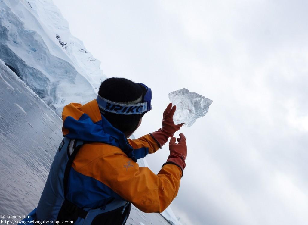 Yuki et de la glace vieille de 10 000 ans - Baie du paradis - Fêter Noël en Antarctique - Une ambiance de fin du monde