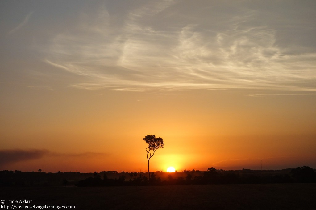 Coucher de soleil au Paraguay