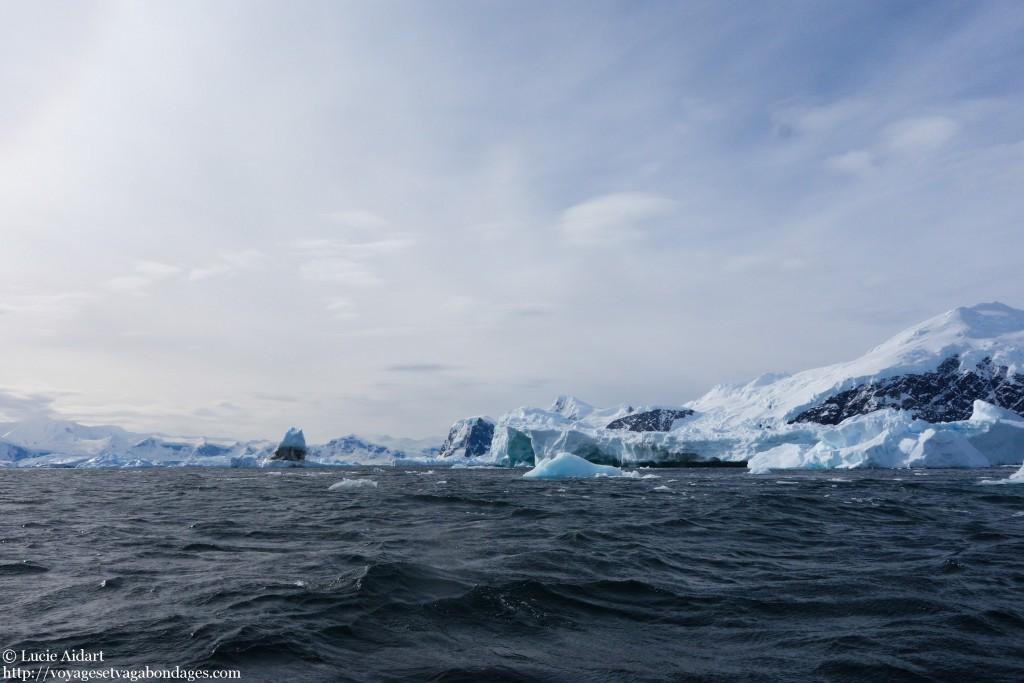 Baleine ou pas baleine? - Fêter Noël en Antarctique