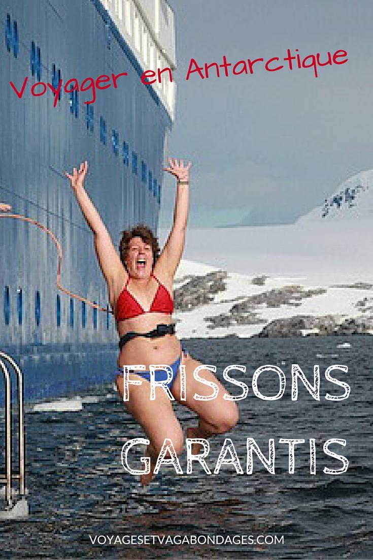 Voyager en Antarctique: frissons garantis