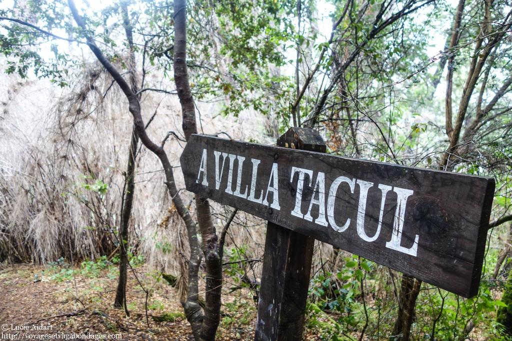Villa Tacul