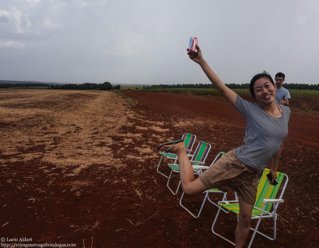 Apéro dans les champs de soja