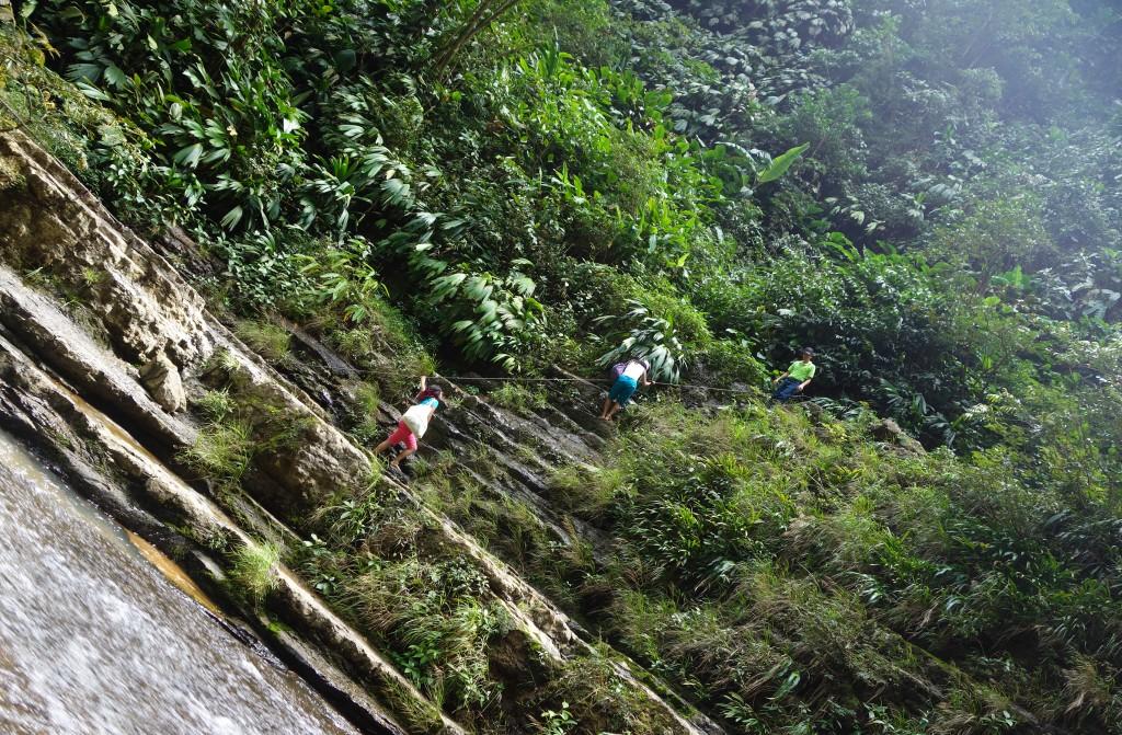 Cascade Juan Curi