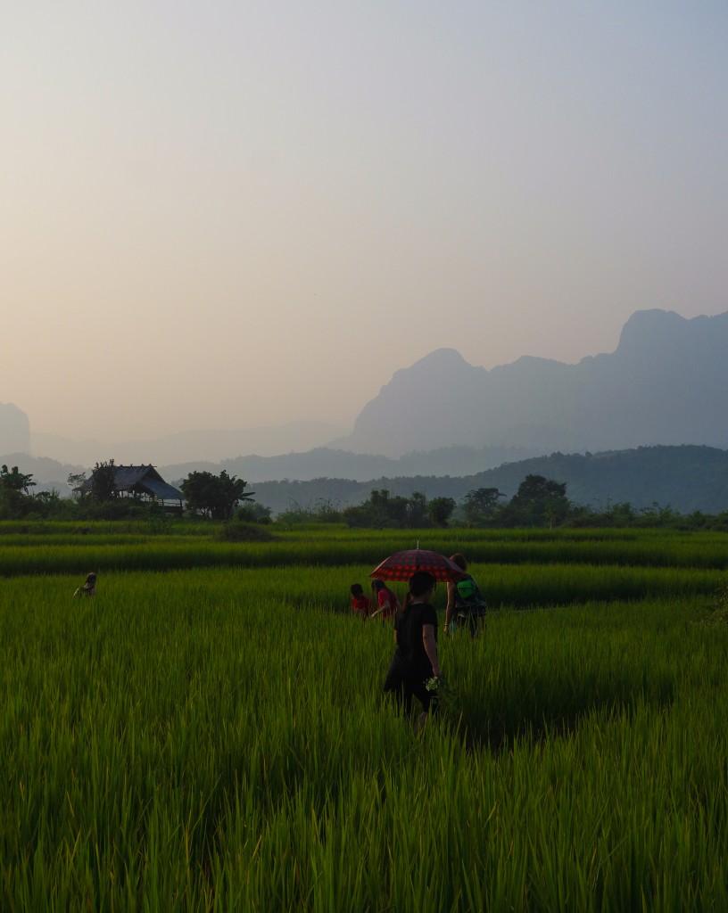 Le Laos, un coup de coeur