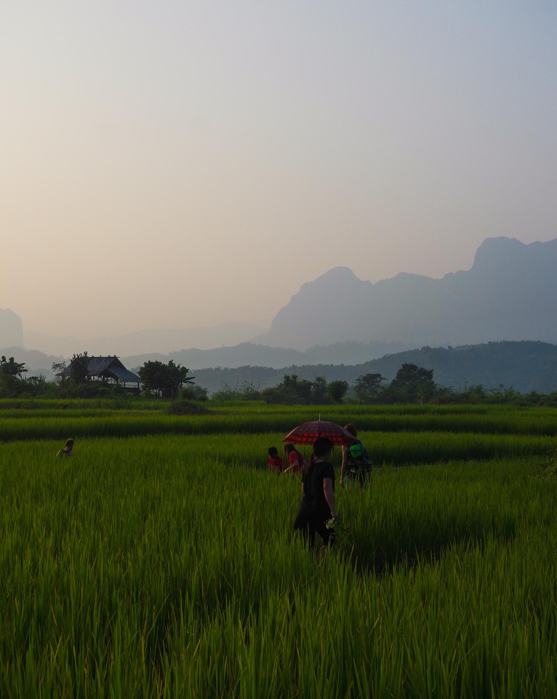 Au Laos,