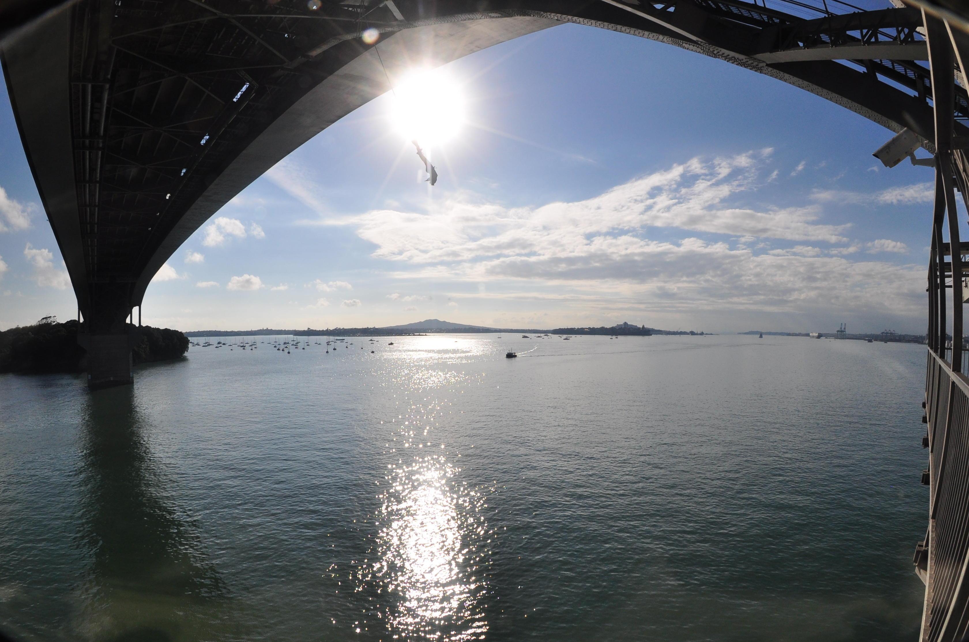 Saut à l'élastique à Auckland