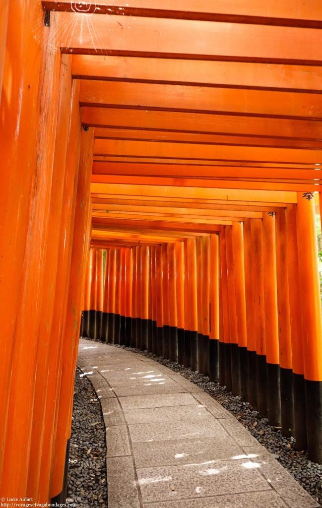 Kyoto, 30 Jours au Japon: le bilan