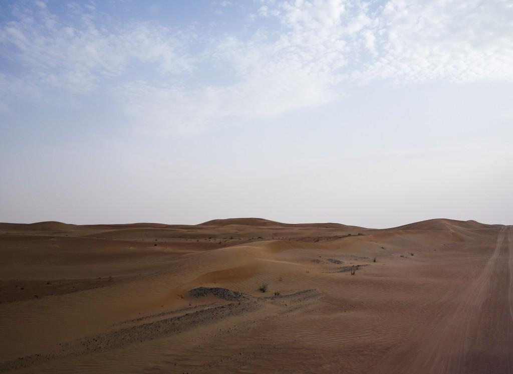 Excursion dans le désert à Dubaï