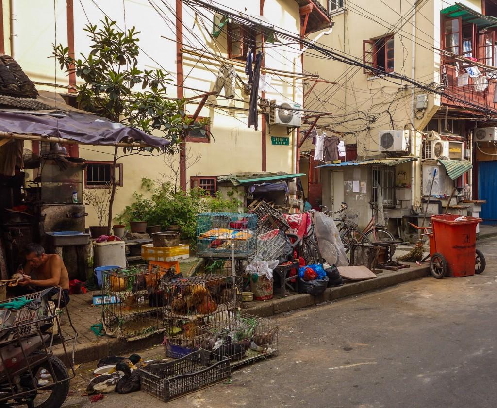 Voyage en Chine: quartier traditionnel à Shanghai