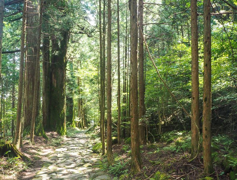 La nature splendide, historique, spirituelle et mystérieuse à Nikko