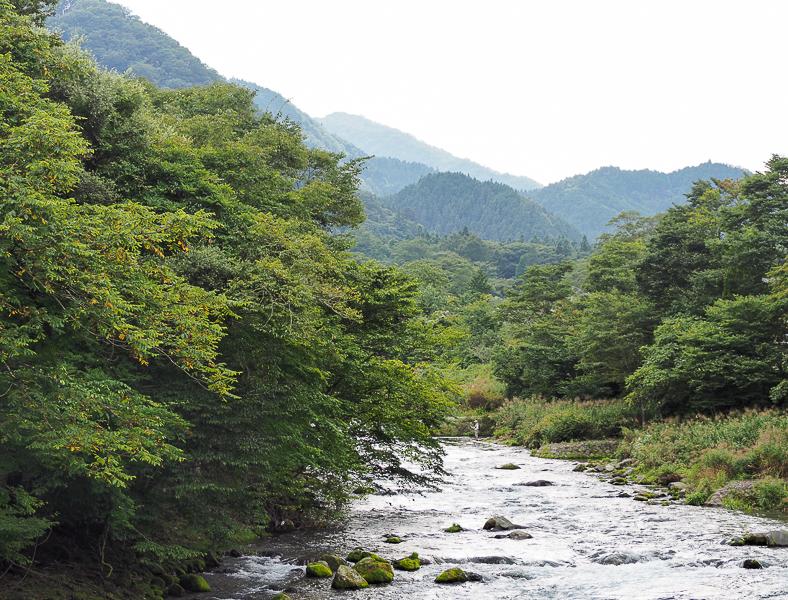 Un pêcheur dans la rivière au Japon