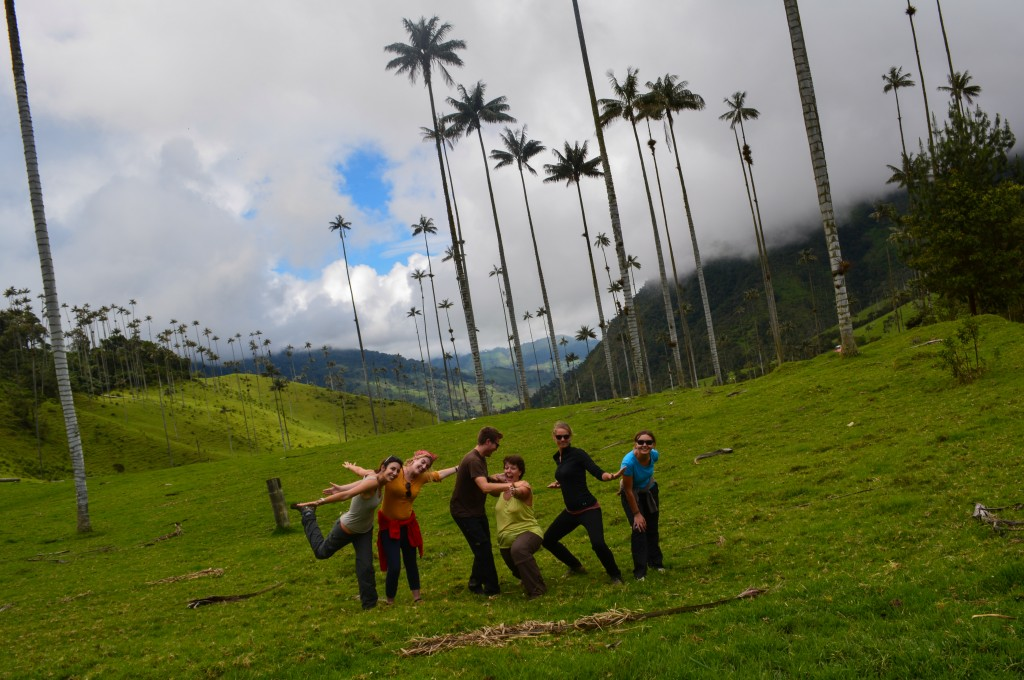 Salento, voyage en Colombie, Vallée de la Cocora