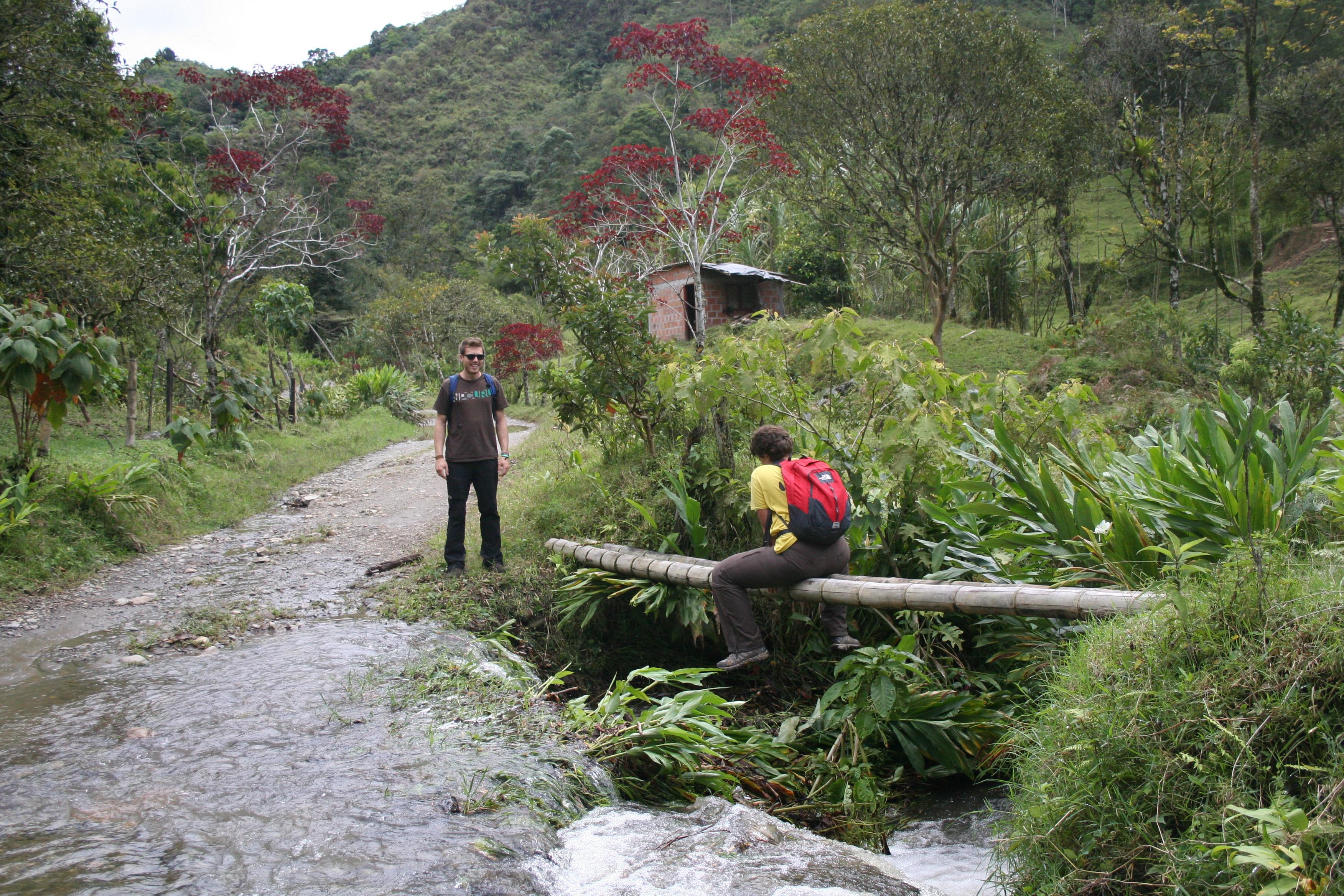 Salento, voyage en Colombie, Plantations de café