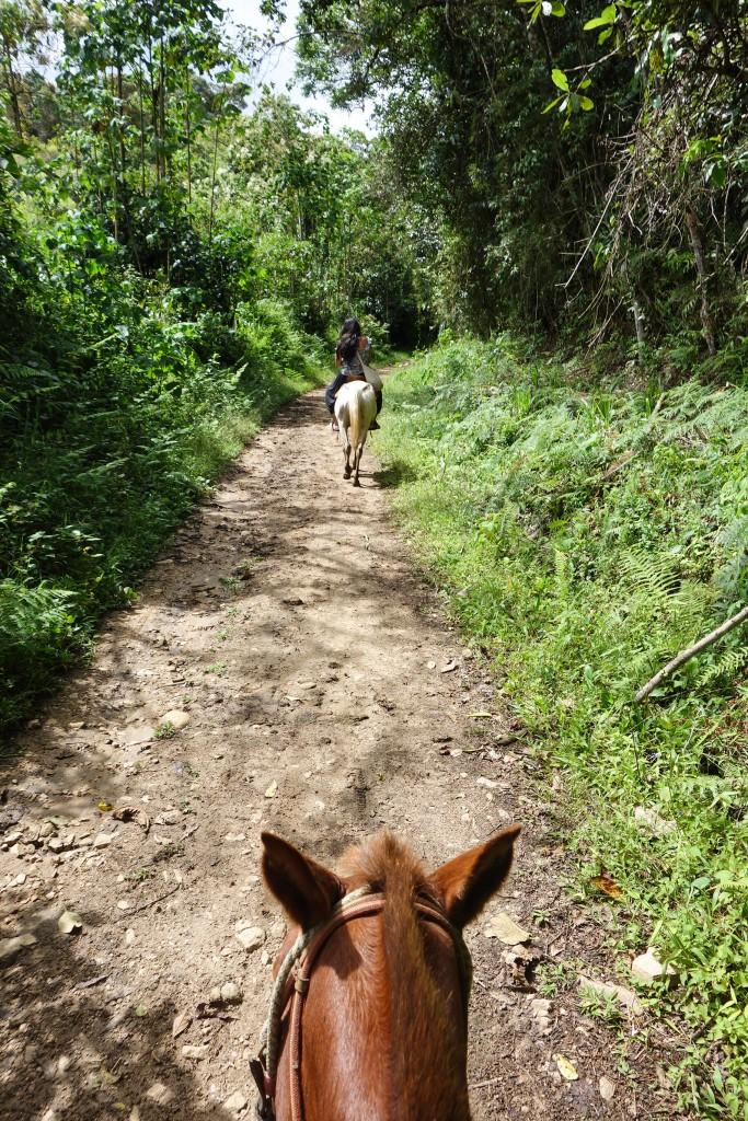 A cheval à San Agustin