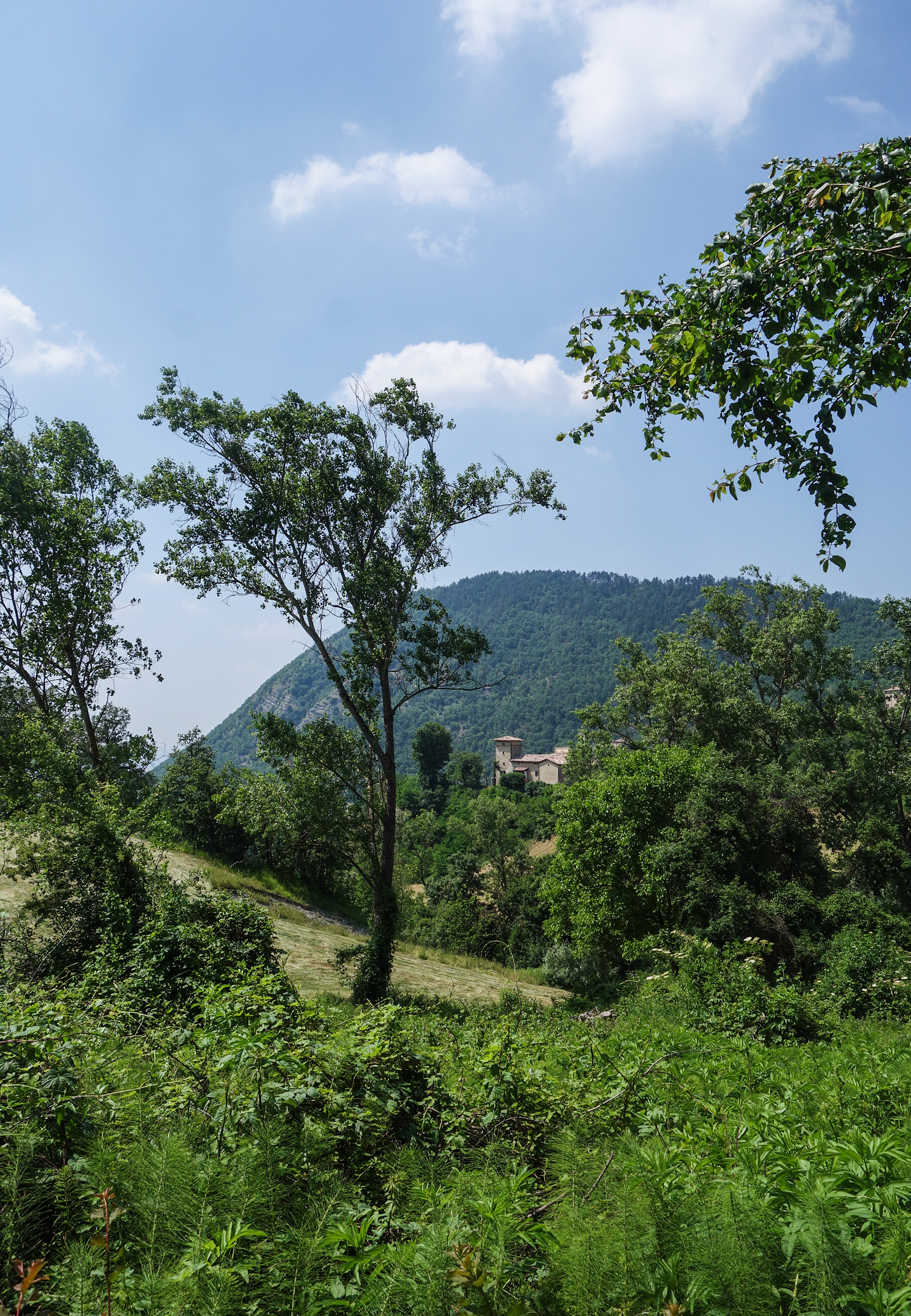 Randonnée en Italie: instants champêtres à Zocca