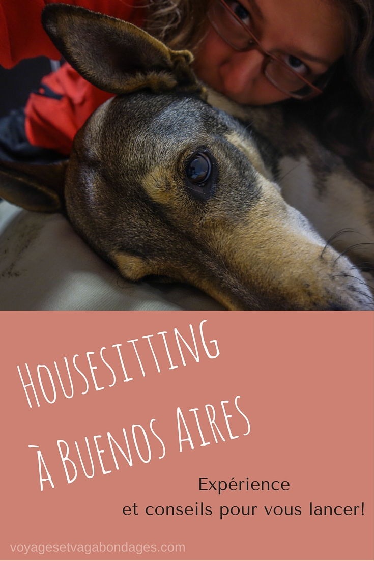Housesitting à Buenos Aires