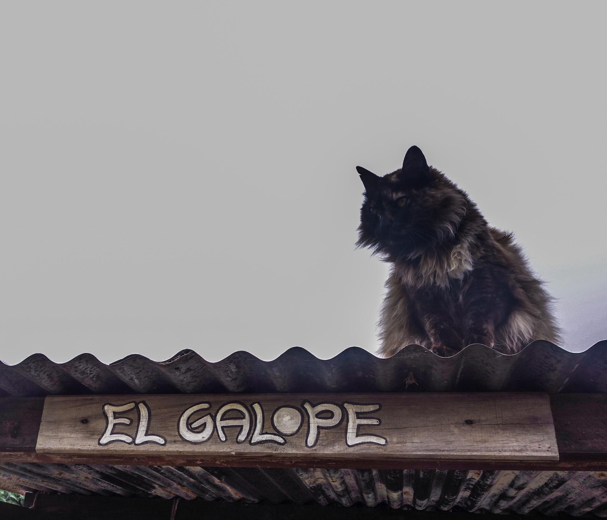 Estancia El Galope
