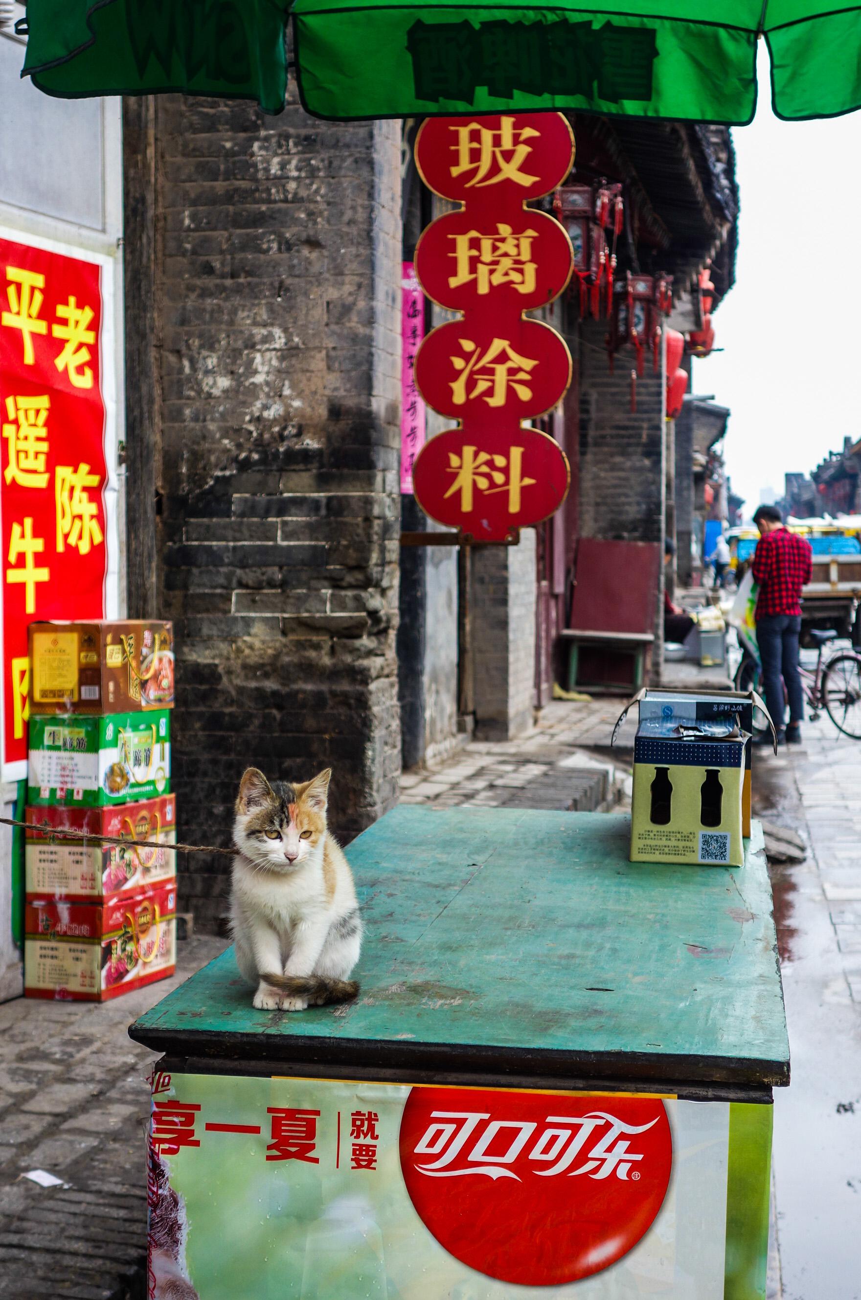 Pingyao en Chine