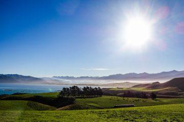 Randonnée à Kaikoura à la découverte des phoques et des plages