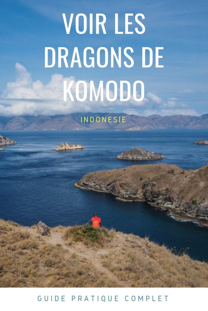 Voir les dragons de Komodo dans leur habitat naturel - Visiter le Parc national de Komodo à Flores en Indonésie