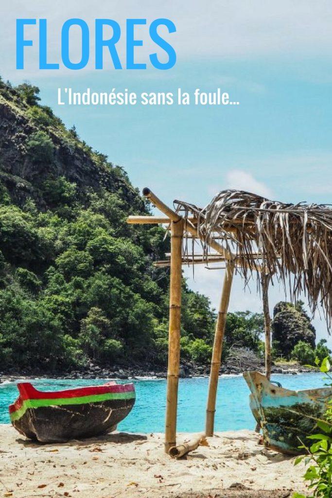 Découvrir l'Indonésie hors des sentiers battus et sans la foule: le guide pratique complet pour visiter Flores et Komodo