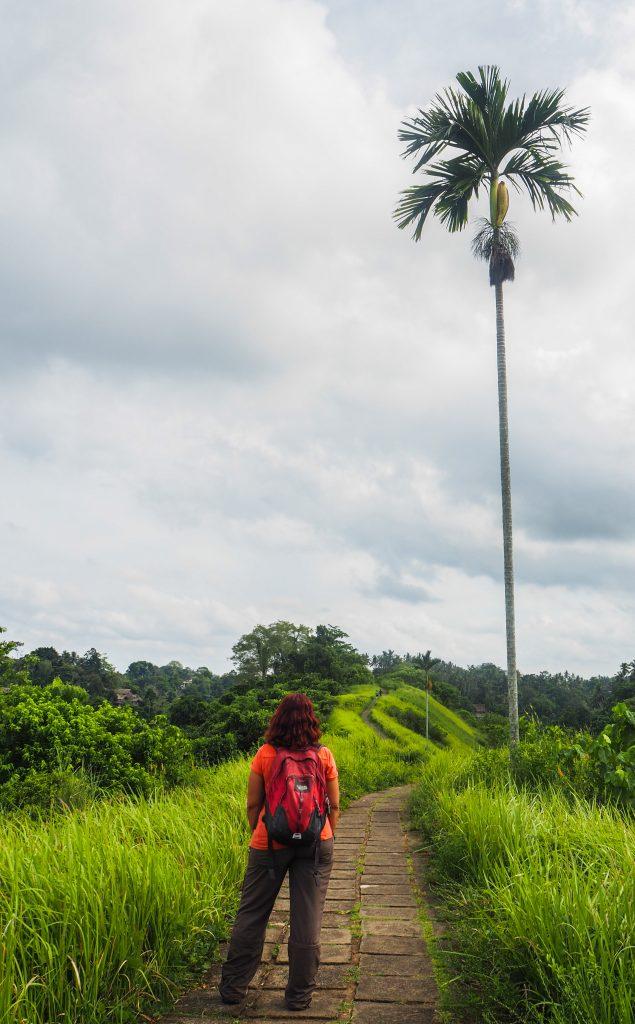 Préparer un voyage en Indonésie: guide pratique, conseils, bons plans et itinéraires