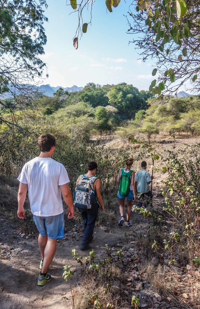 Randonnée pour aller découvrir et voir les dragons de Komodo sur l'île de Komodo