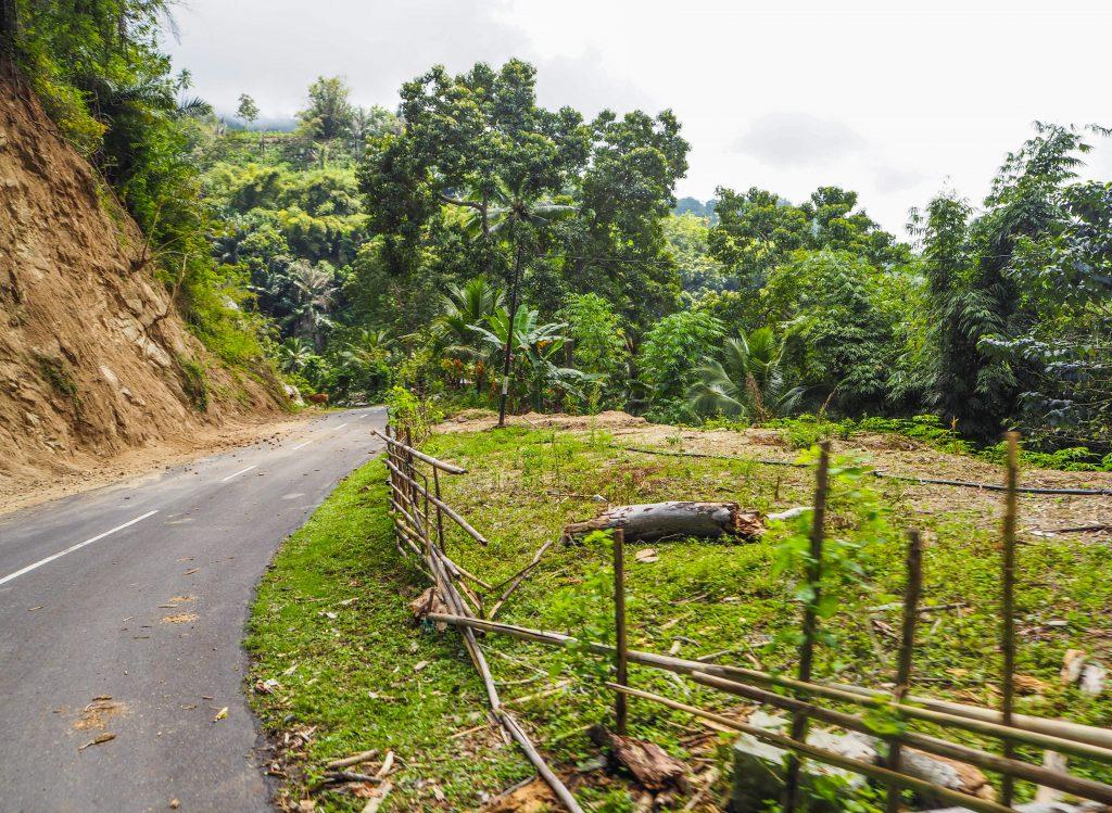 Voyager en Indonésie hors des sentiers battus: à la découverte de l'île de Flores et de Komodo