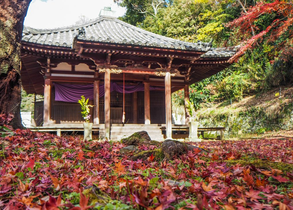 Le temple Kimiidera à Wakayama