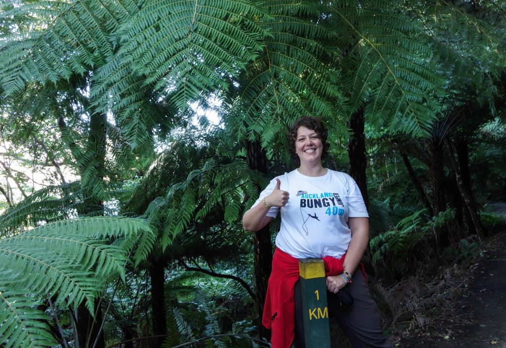 Mon premier trek en Nouvelle-Zélande: 4 jours sur le Queen Charlotte Track, une boucle depuis Picton, 71km sans sac et en hôtel