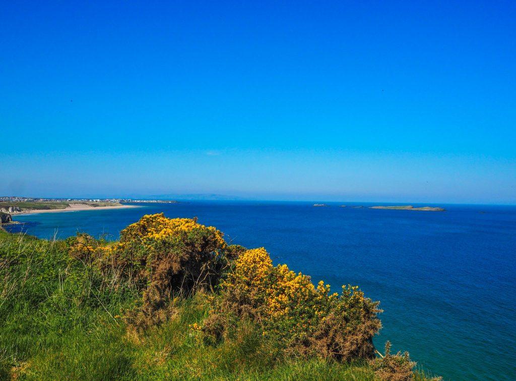 La Causeway Coastal Route en Irlande du Nord: un des meilleurs road-trips au monde: plage de Whiterocks