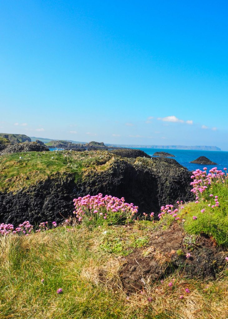 La Causeway Coastal Route en Irlande du Nord: un des meilleurs road-trips au monde: Ballintoy