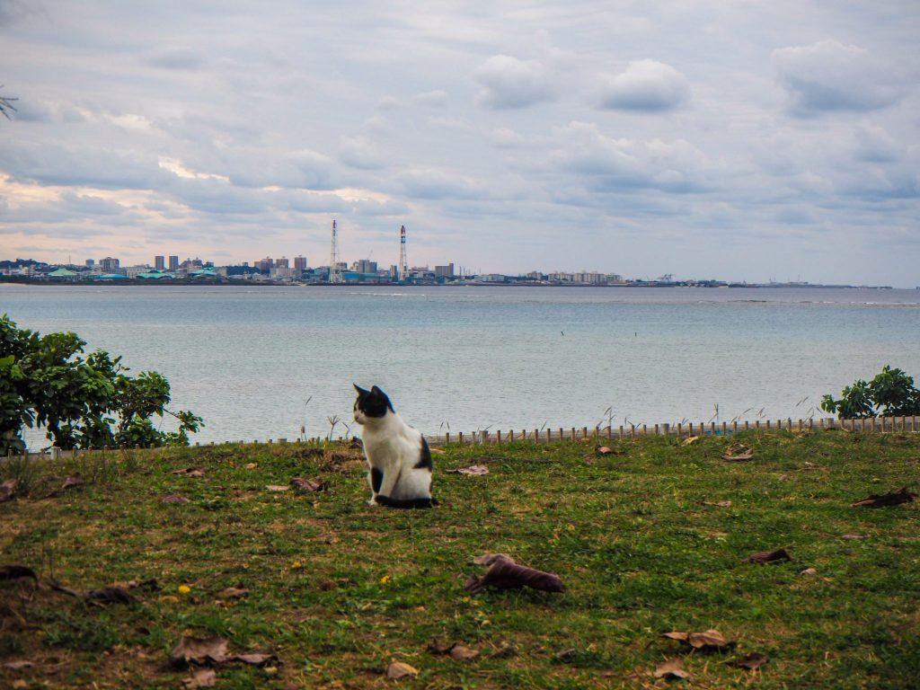 Visiter l'île d'Okinawa au Japon sans voiture: récit, bonnes adresses et guide pratique: Chatan