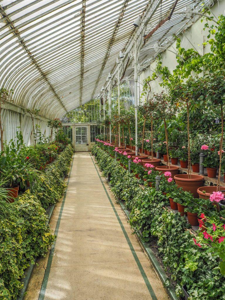 Jardin botanique de Belfast - Un week-end à Belfast: conseils pratiques et bonnes adresses pour un week-end réussi de quelques jours en Irlande du Nord