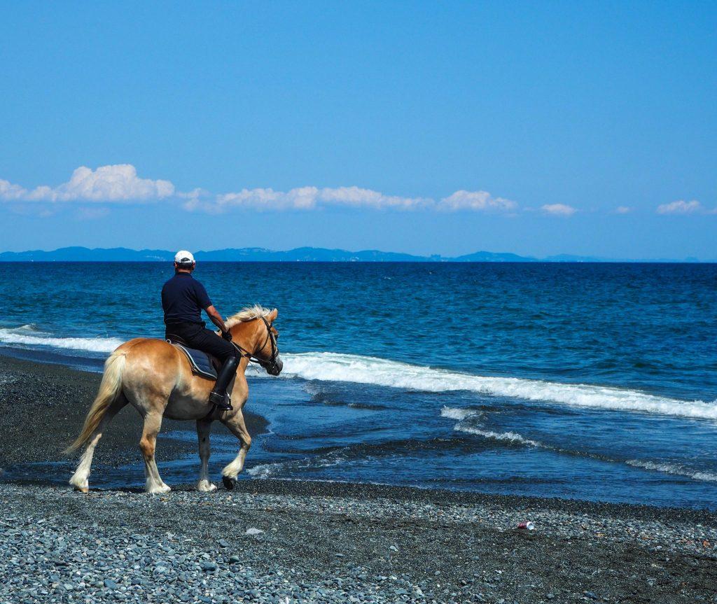Balade à cheval sur la plage à Oiso au Japon