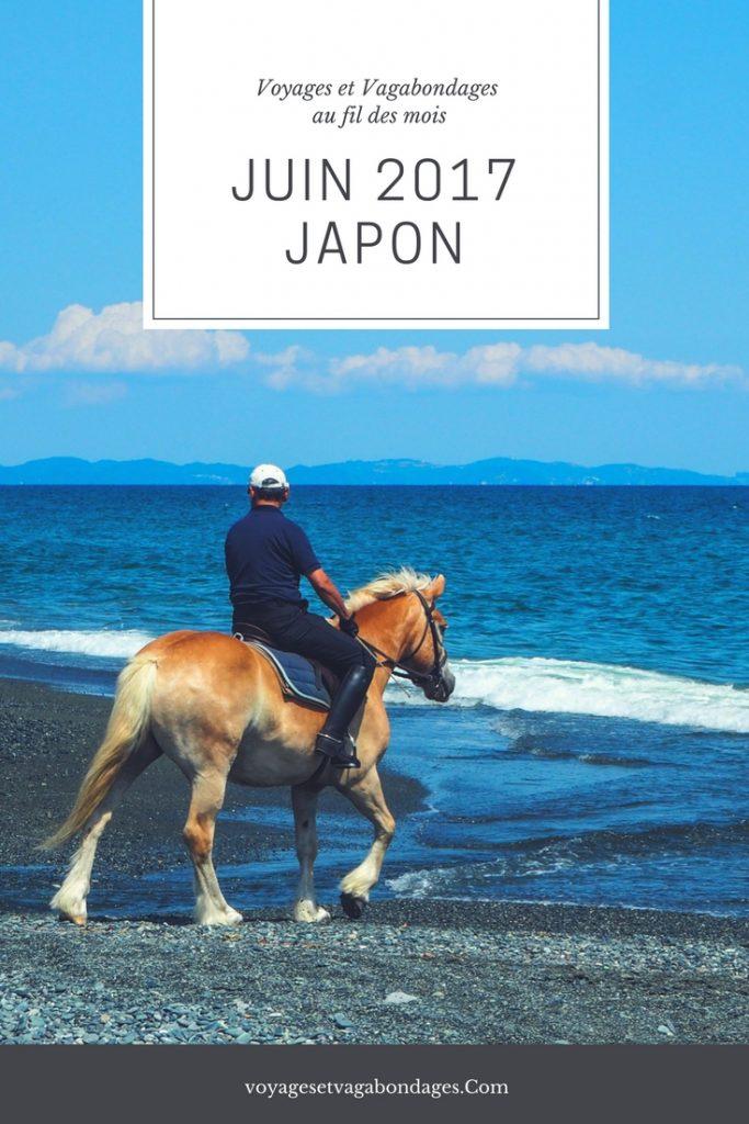 Voyages et Vagabondages au fil des mois: Japon en juin 2017. Bilan mensuel