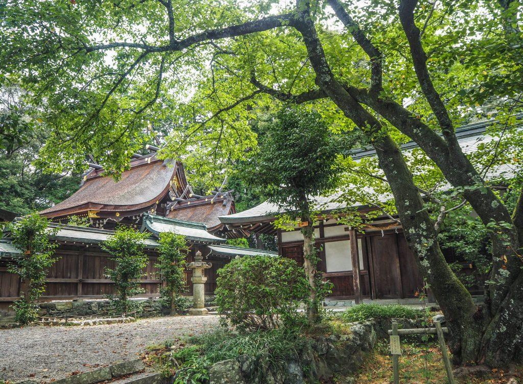 Un temple dans la ville de Wakayama lors d'un voyage authentique au Japon en mode slow travel